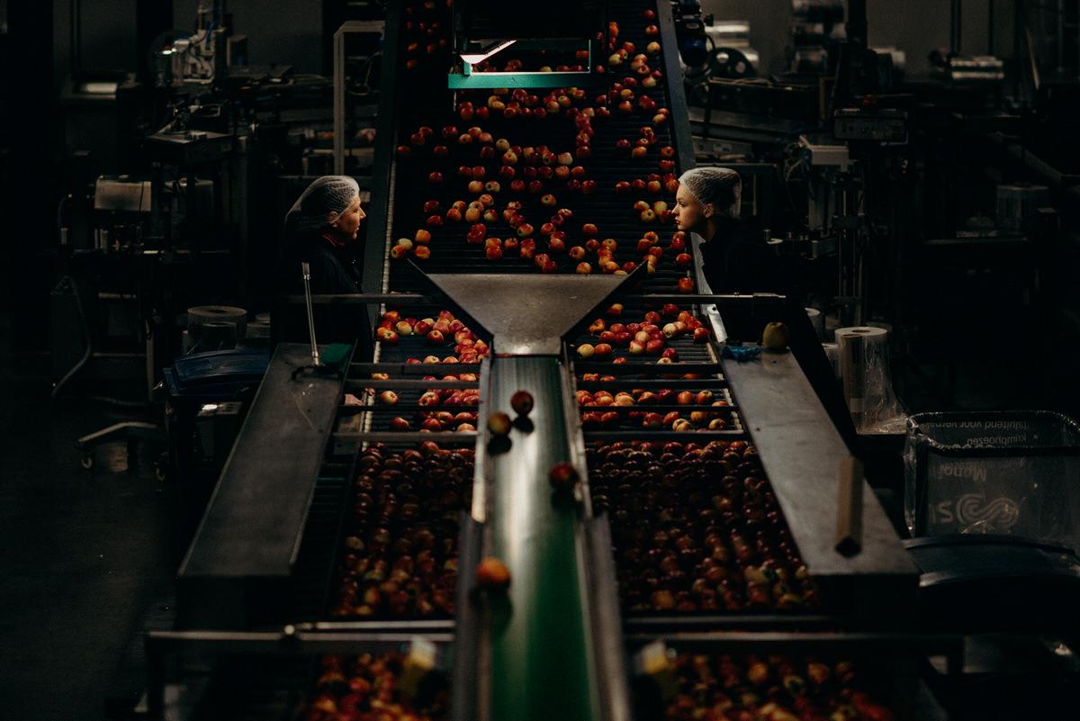 sfeervolle-reportagefotografie-fabriek-fruit14